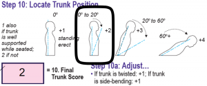 RULA Step 10-Locate Trunk Position