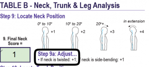 RULA Step - 9 Locate Neck Position